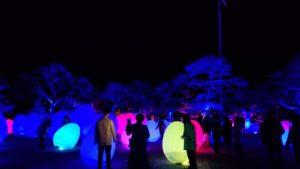 高知市の高知城で各国で開催されているチームラボ写真|高知市 注文住宅SAI