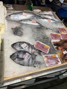 新鮮な魚が氷の上で並んでいる画像|高知デザイン新築注文住宅SAI